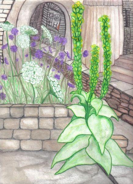 Plants Crack Stone